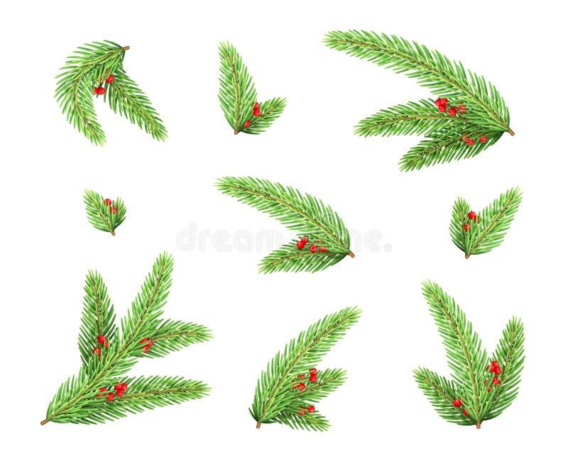 Branches de sapins de Noël avec éléments de baies rouges images libres de droits