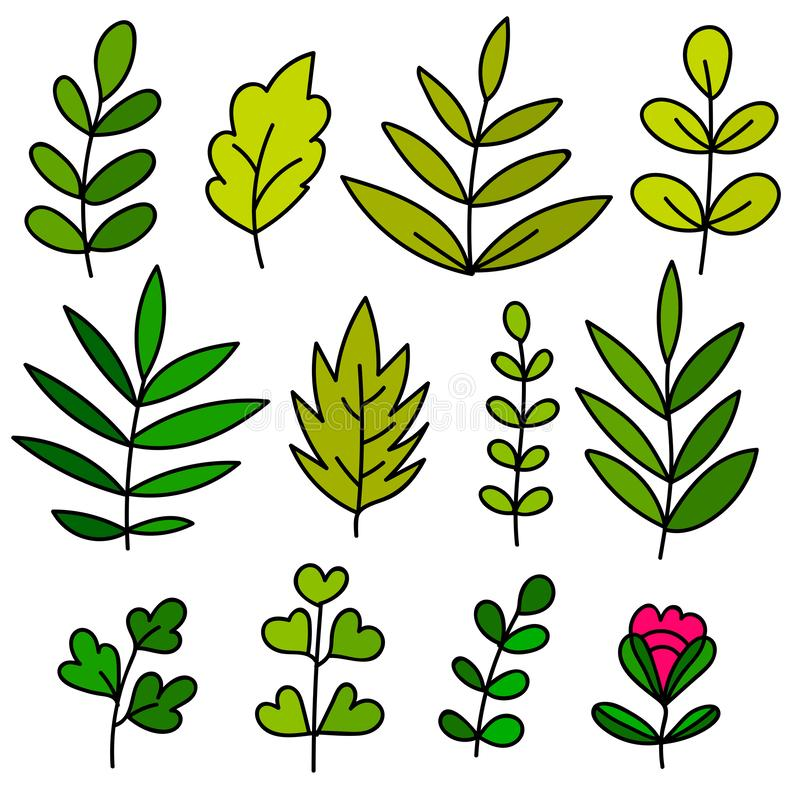 Floral set of colorful hand drawn elements, tree branch, bush, plant, tropical leaves, flowers, branches, petals isolated on white vector illustration