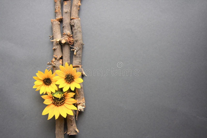 Branches and sunflowers