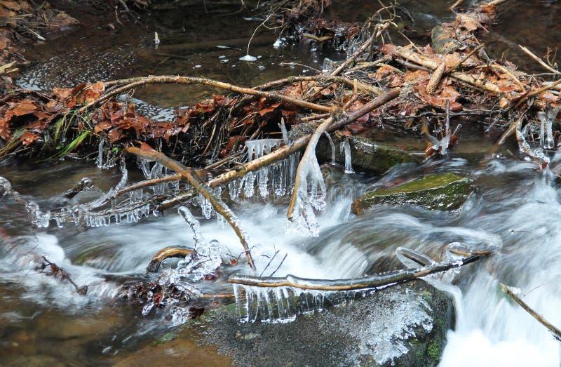Branches gelées au-dessus de l'eau photographie stock