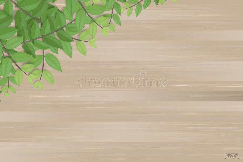 Branches of green leaves on brown wood texture background. Vector. Branches of green leaves on brown wood texture background. Vector illustration stock illustration