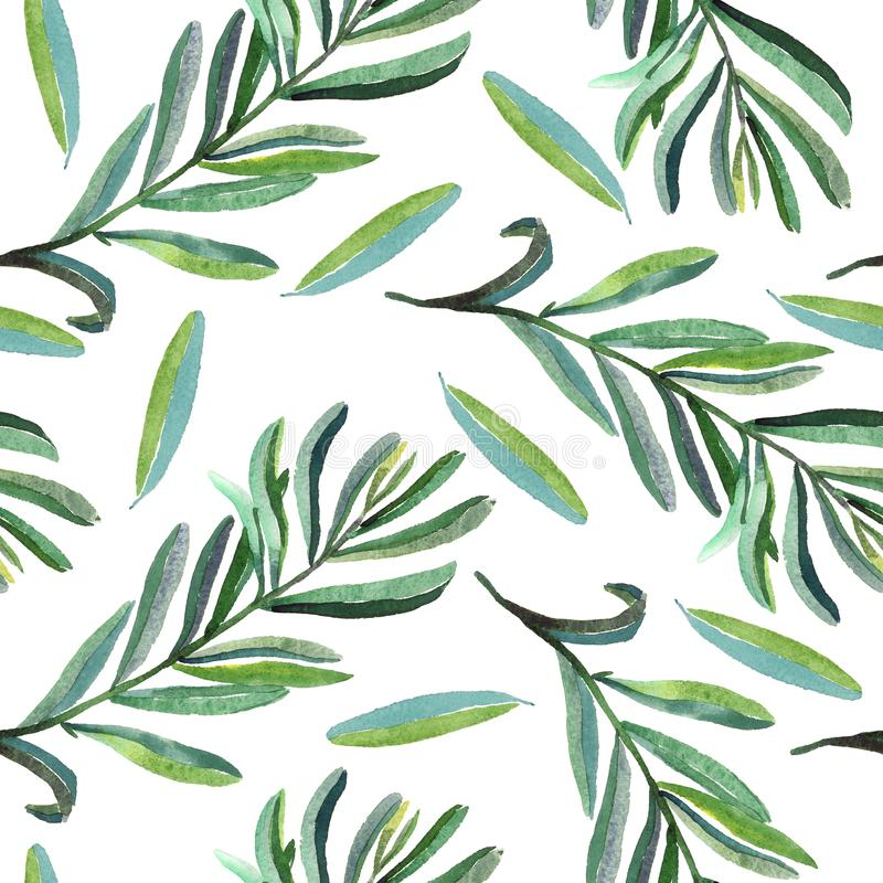 Branches with green leaves, seamless pattern design on white background royalty free illustration