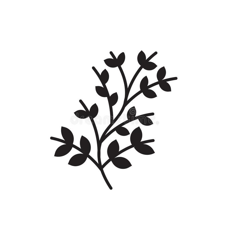 Branches with leaves icon vector sign and symbol isolated on white background, Branches with leaves logo concept. Branches with leaves icon vector isolated on vector illustration