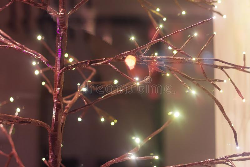 Branches lights decorative plant. tree buds lights glowing royalty free stock image