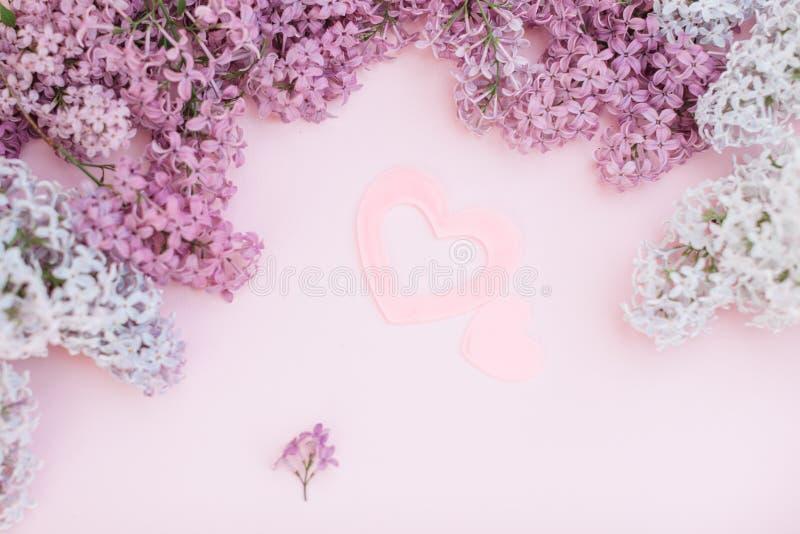 Branches lilas et deux coeur rose sur un espace vide de fond rose-clair pour votre texte, vue supérieure Un grand et un petit coe images libres de droits