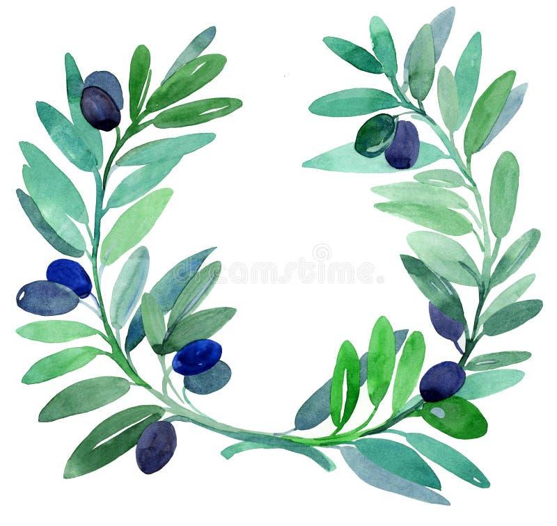 branches olivgrön royaltyfri illustrationer