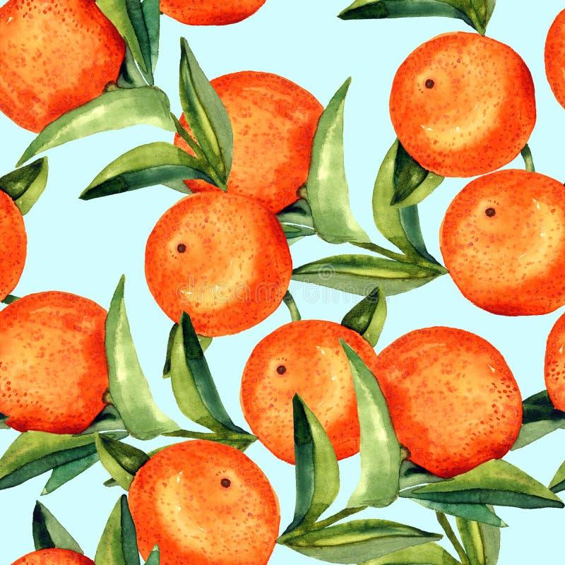 Branches oranges avec des fruits sur le fond bleu mou illustration stock