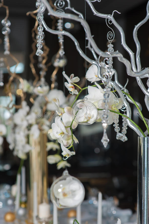 Branches Of Orchids In Vases Stock Photo Image Of Decoration