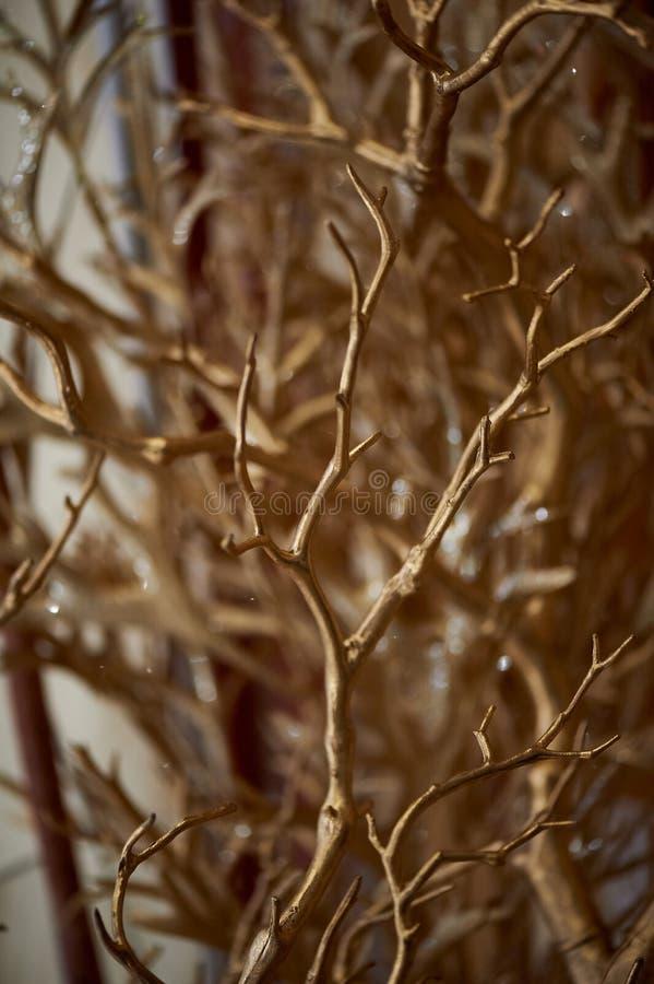 Branches peintes avec la peinture d'or L'élément décoratif Abstraction de texture photos stock
