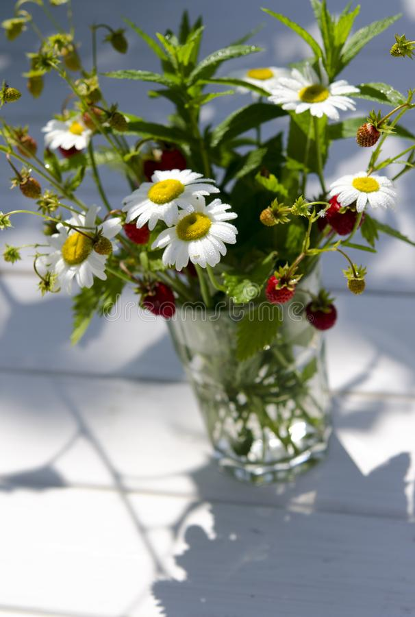 Branches of red ripe strawberries, white daisies and mint leaves stand in a glass of water on a wooden stump. Against the background of green grass, berry royalty free stock images