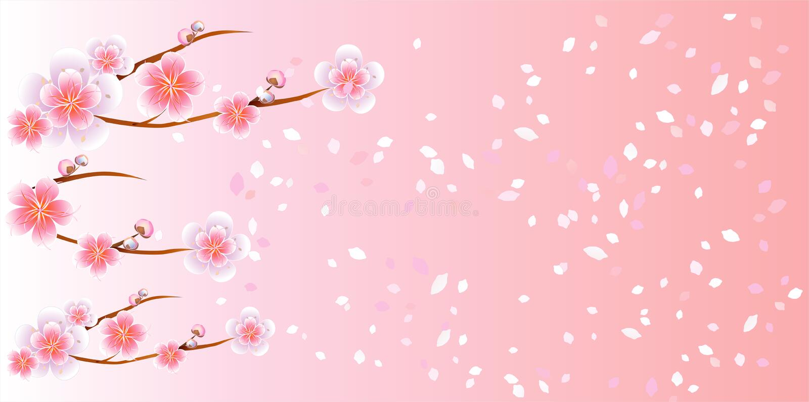 Branches of Sakura and petals flying isolated on light pink background. Apple-tree flowers. Cherry blossom. Vector EPS 10, cmyk vector illustration