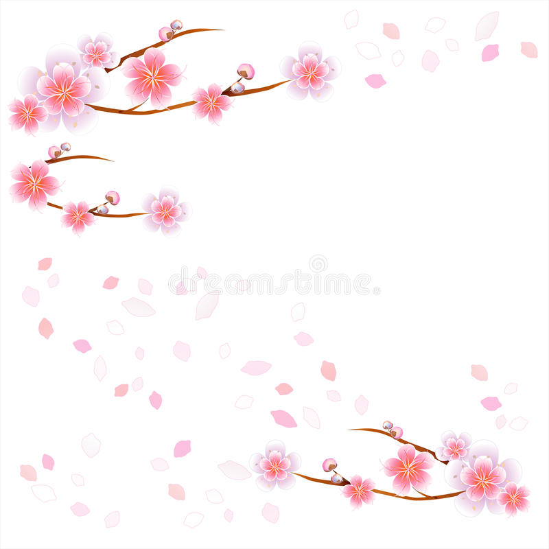 Branches of Sakura and petals flying isolated on white background. Apple-tree flowers. Cherry blossom. Vector EPS 10, cmyk stock illustration