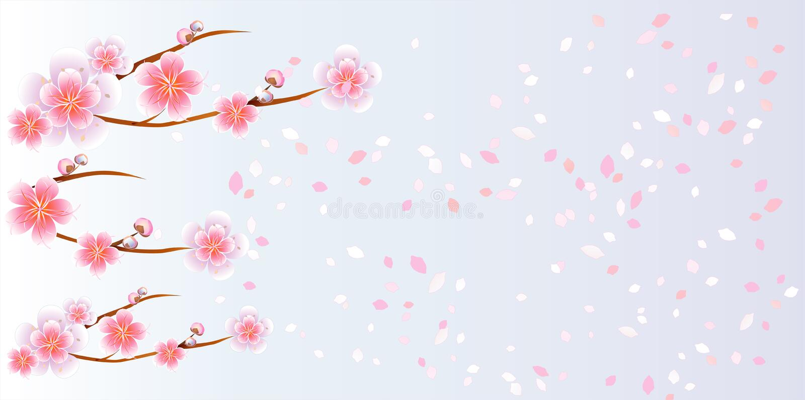 Branches of Sakura and petals flying on light blue purple background. Apple-tree flowers. Cherry blossom. Vector EPS 10 stock illustration