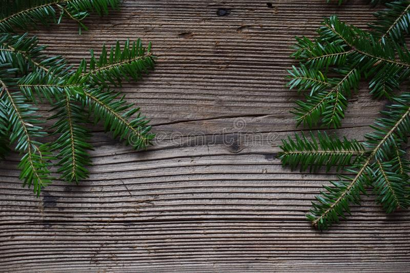 The branches of spruce on a wooden background. Happy New Year and Merry Christmas concept. Greeting card or festive background. Copy space stock image