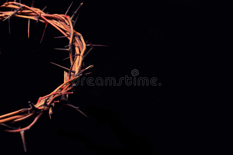 Branches of thorns woven into a crown depicting the crucifixion. On an isolated background stock photography