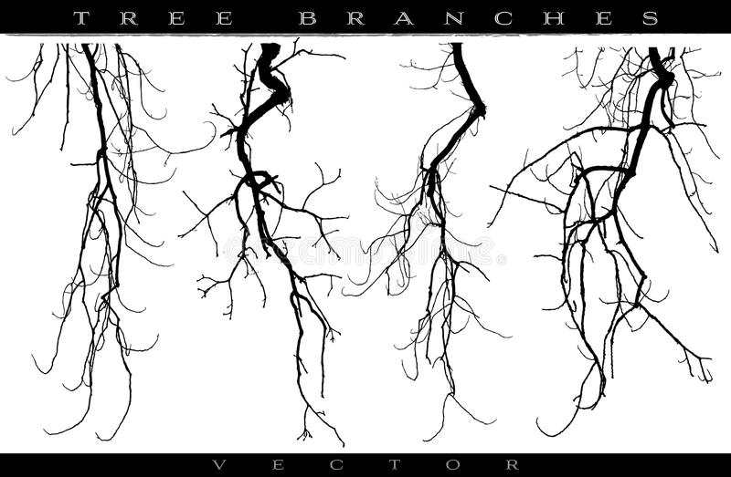 branches treen royaltyfri illustrationer