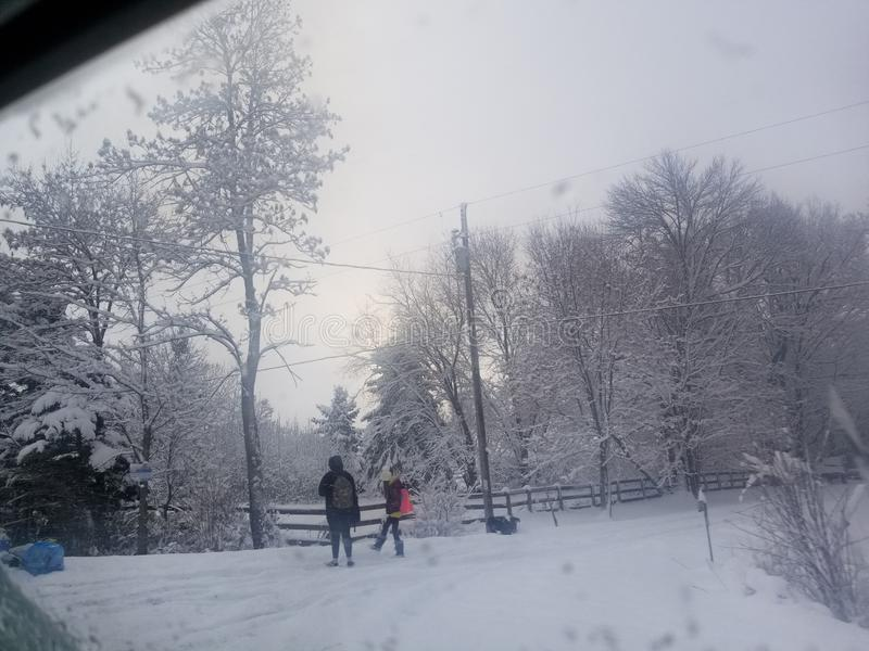 Branches trees heavy snow winter sunrise bright sky behind trees pair walking to school red backpack stock images