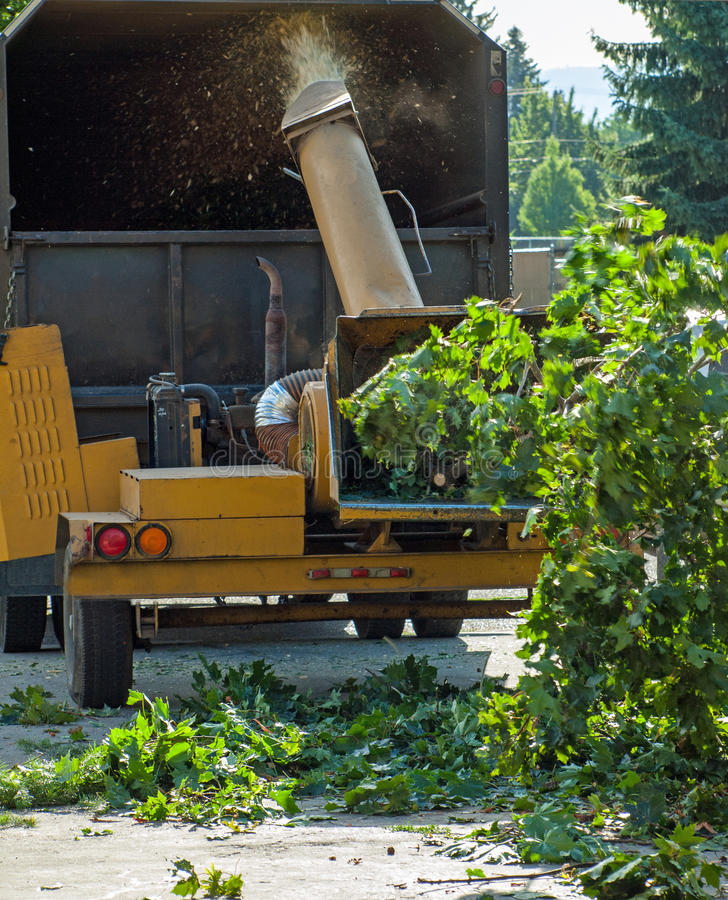Branches in a Wood Chipper royalty free stock images