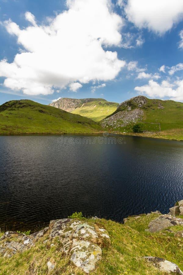 Branchie e montagne del bacino idrico di Llyn y Dywarchen di là, Snowdonia fotografia stock libera da diritti