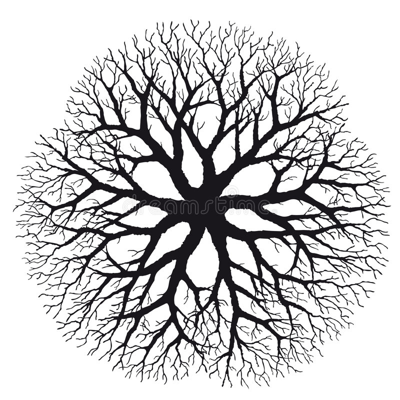 Download Branching (vector) stock vector. Illustration of abstract - 7556589