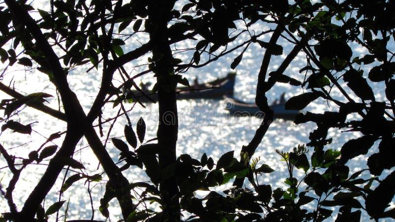 Branchs и шлюпки на море стоковое изображение