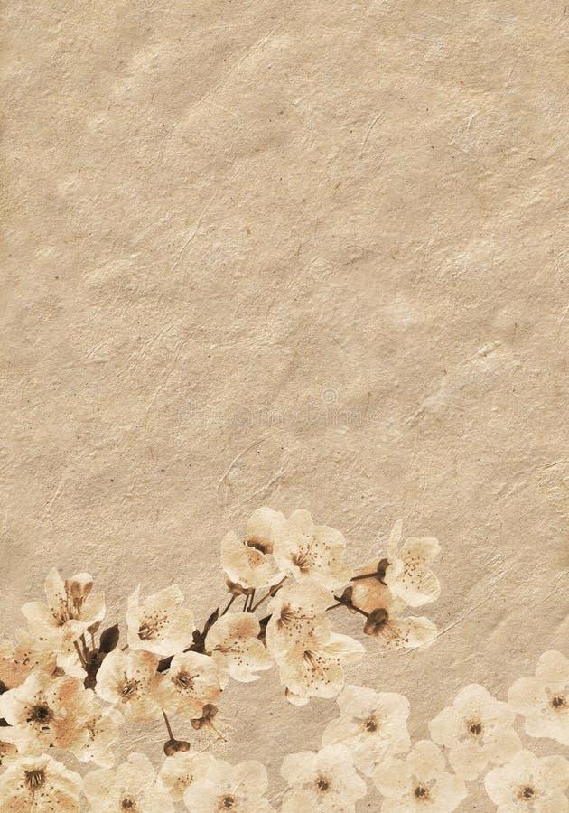 branck καλυμμένο δέντρο δαμάσκ&eta διανυσματική απεικόνιση