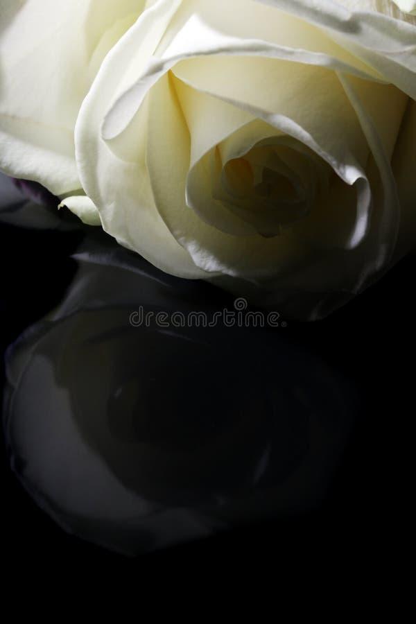 Branco ao preto fotografia de stock