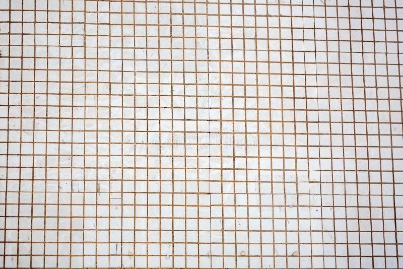 Branco e cinzento a foto ou o tijolo real de alta resolução da parede da telha sem emenda imagem de stock