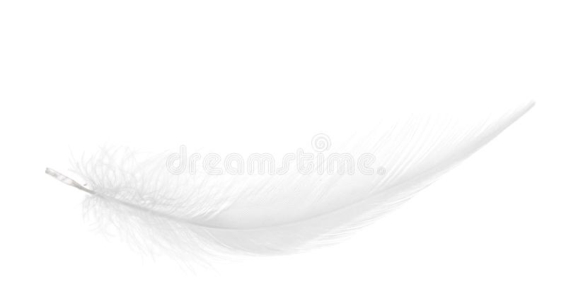 Branco puro pena macia isolada imagens de stock