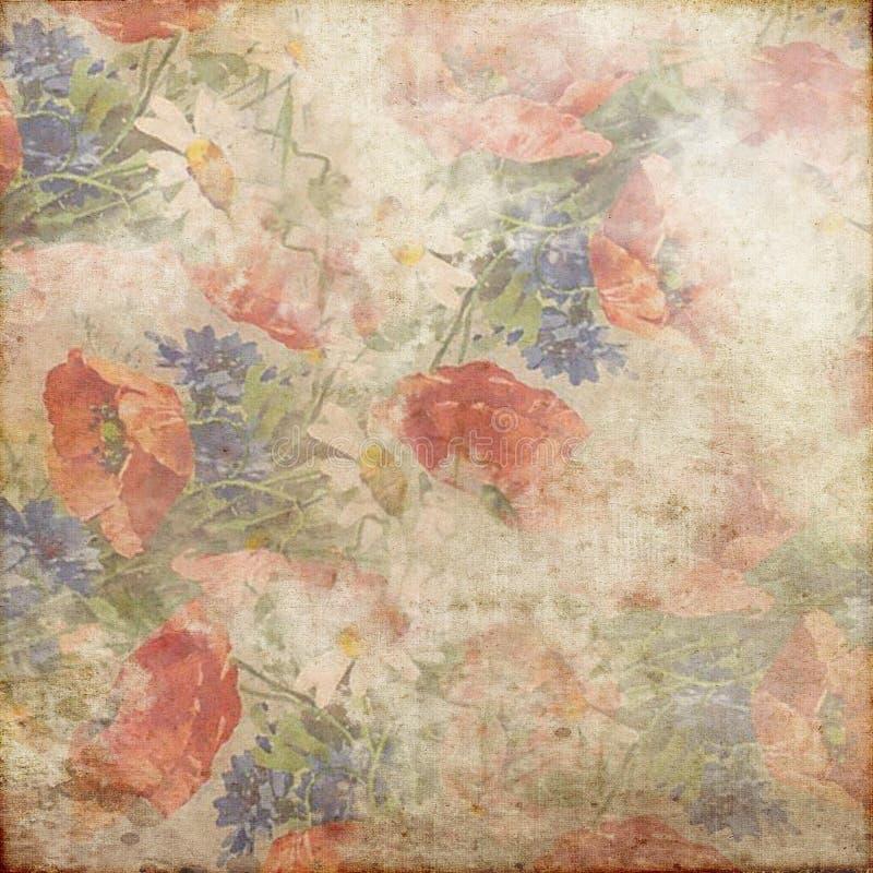 Branco vermelho 142 do rosa do verde azul do fundo do Grunge do vintage foto de stock royalty free