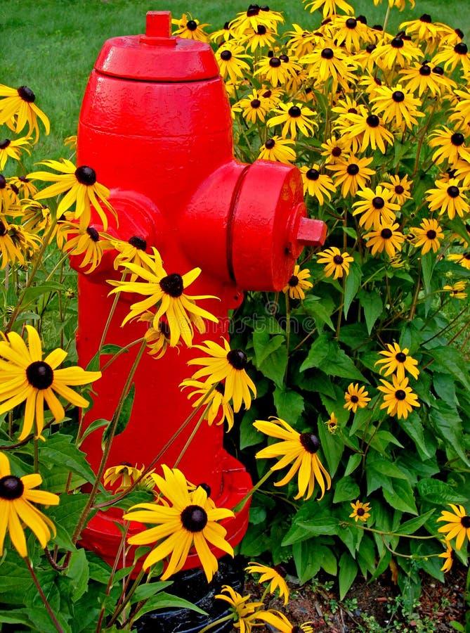 brand blommar hydranten royaltyfri foto