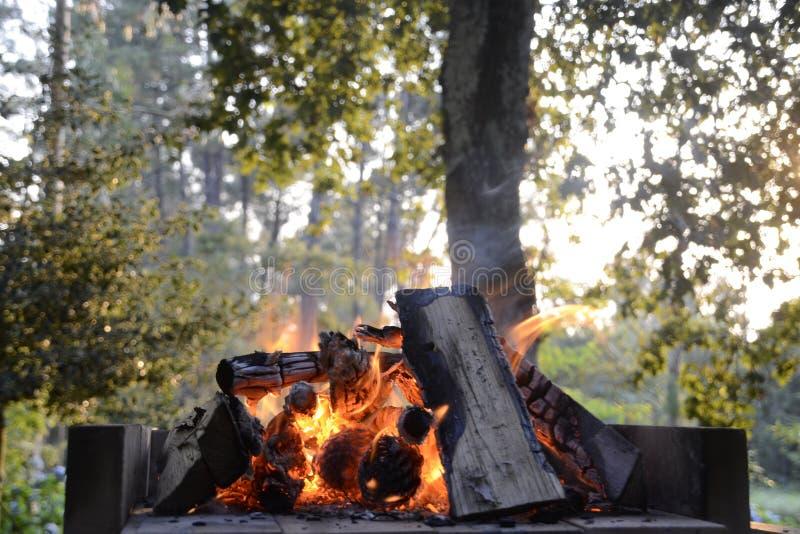 Brand in een barbecue stock fotografie
