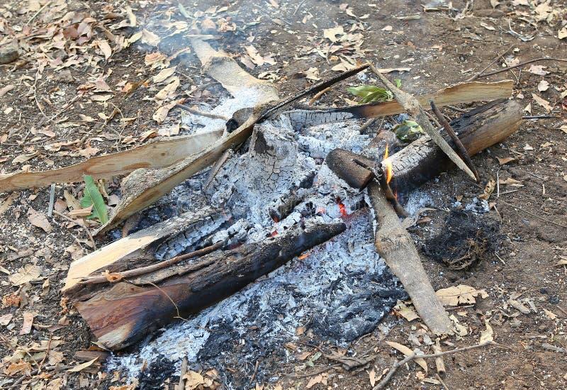 Brand en rook het branden op houten boomstam camfire royalty-vrije stock afbeeldingen