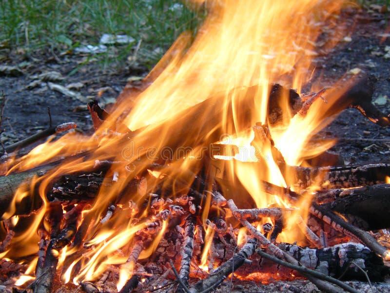 Brand flamma, gnistor arkivbilder