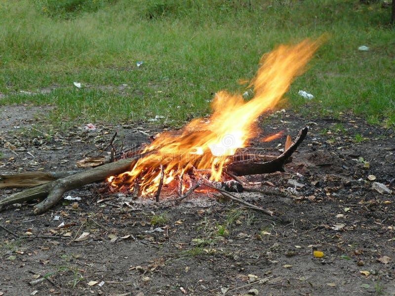 Brand flamma, gnistor royaltyfria bilder