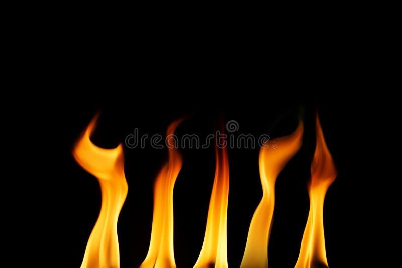 Brand flammar att komma upp på svart bakgrund royaltyfri fotografi