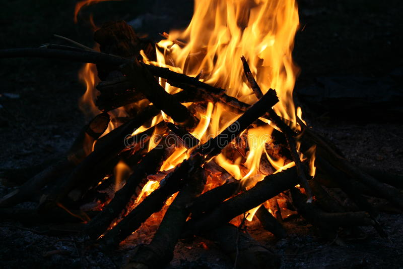 Brand in het bos royalty-vrije stock afbeelding