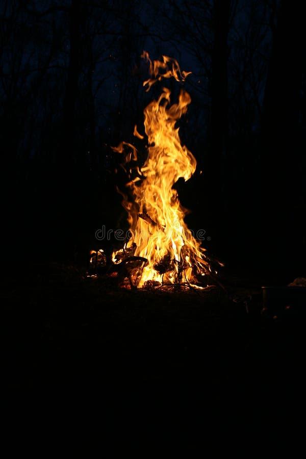Brand in het bos royalty-vrije stock afbeeldingen