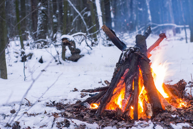 Brand in het de winterbos royalty-vrije stock afbeeldingen