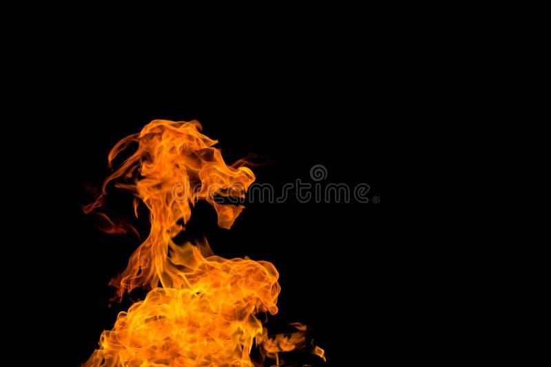 Brand i formen av en get tystar ned Brand flammar p? isolerad svart bakgrund Brandmodeller royaltyfria bilder