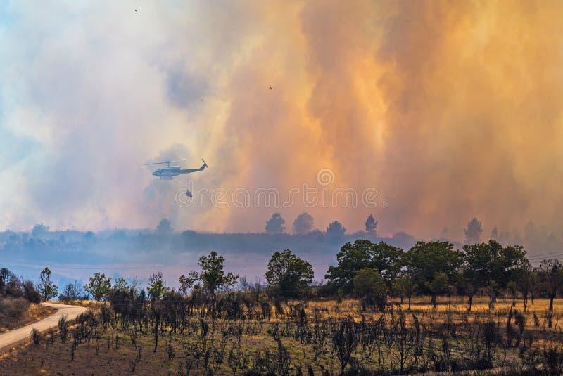 Download Brand i skogen fotografering för bildbyråer. Bild av nyheterna - 27280981