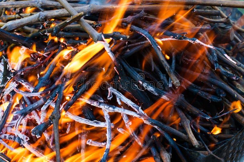 Brand med glöd för grillfesten royaltyfri foto