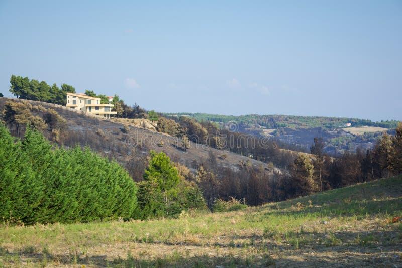 Brand in Noordoosten Attica, Griekenland stock foto's