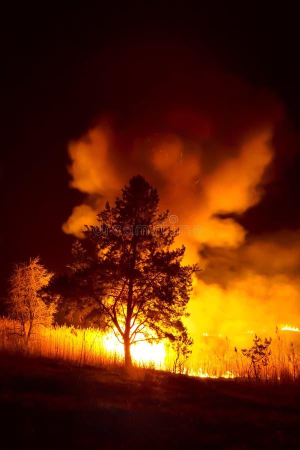 Brand op een rivier stock foto