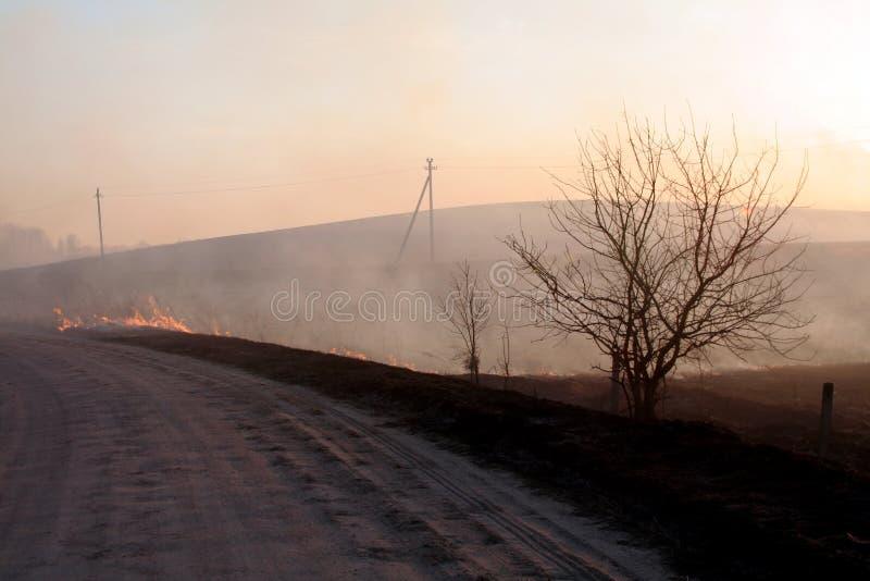 Brand op het gebied stock afbeelding