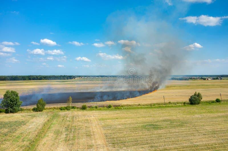 Brand på fältet arkivbild