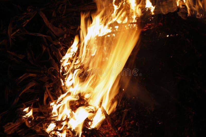 Brand, vlammen op een zwarte achtergrond, brandtextuur stock afbeeldingen