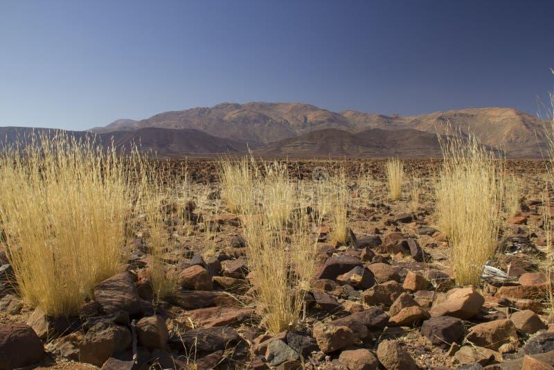 Brandberg山,纳米比亚 免版税库存照片