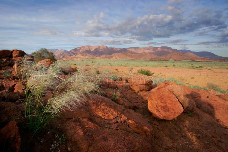 brandberg沙漠横向山纳米比亚 免版税库存图片