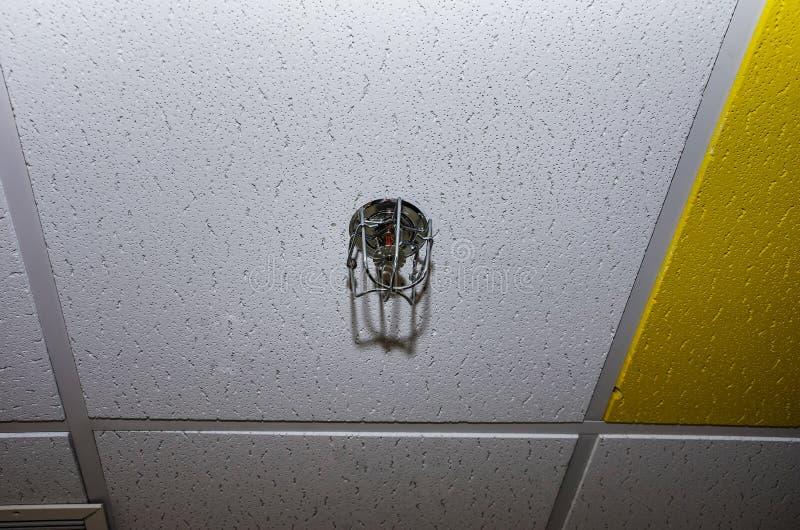 Brandbestrijdingsapparaat dat in het bureau op het plafond wordt geïnstalleerd Watersproeier in het geval van brand stock foto